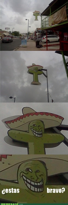 cactus estas mexico troll face