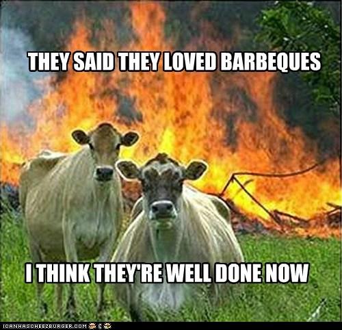 evil cows - 6454514176