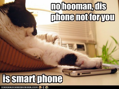 no hooman, dis phone not for you is smart phone