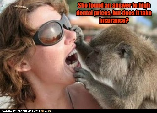 cheap dentist inspecting insurance looking monkey mouth teeth - 6454846208