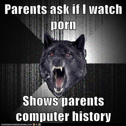 computer history,Insanity Wolf,pron