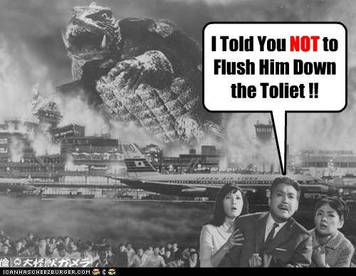 flush,Gamera,monster,result,toilet,turtle