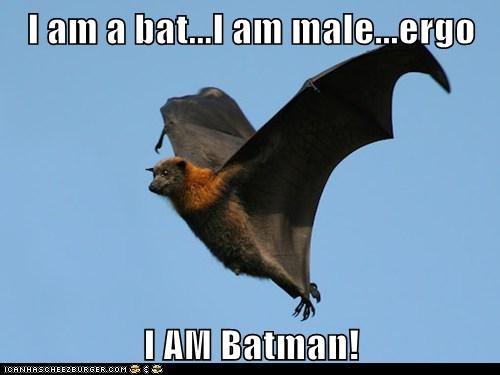 I am a bat...I am male...ergo I AM Batman!