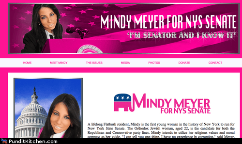 mindy meyer new york political pictures senate - 6455752960