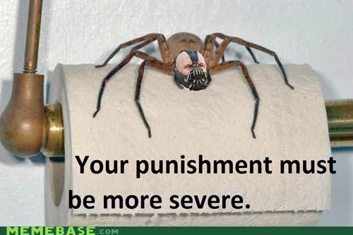 bane,batman,Memes,sever,spider,toilet paper