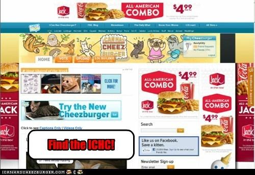 Cheezburger Image 6455953664