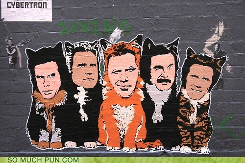 anchorman Cats feral Hanksy homophone reimagining sex panther surname Will Ferrell - 6456285184