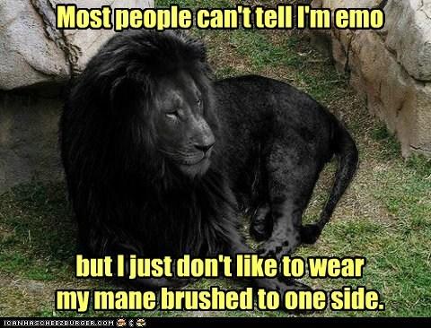 black brushed dyed fur emo lion mane - 6456418816