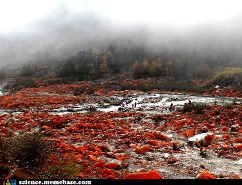 algae,China,land,Life Sciences,red