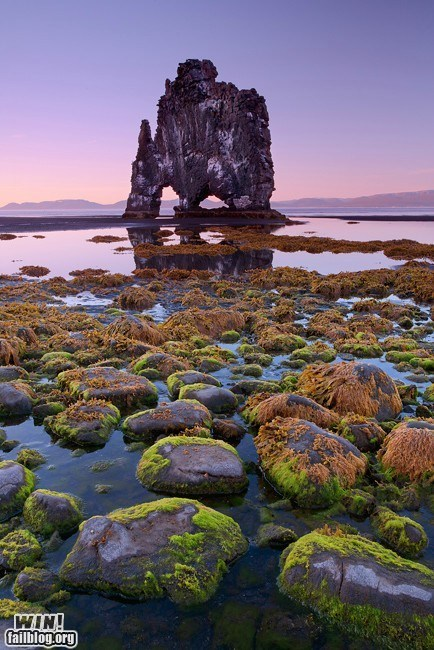 beach Iceland mother nature ftw photography vacation wincation - 6457123072