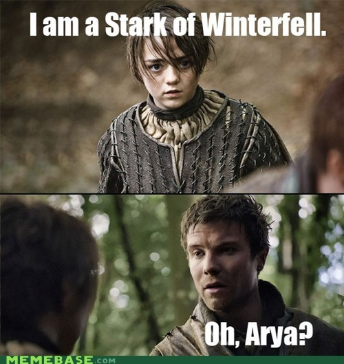 arya stark Game of Thrones pun TV - 6458258432