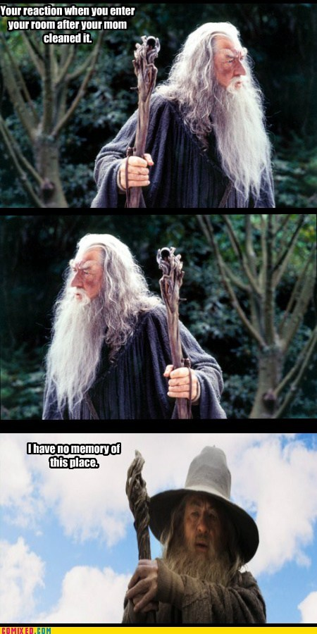 cleaning From the Movies gandalf Lord of the Rings no memory - 6458445056