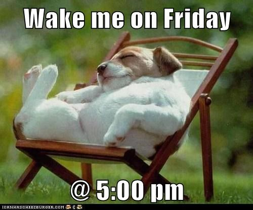 Wake me on Friday @ 5:00 pm