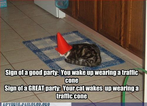 cone,crunk critters,great party,traffic cone
