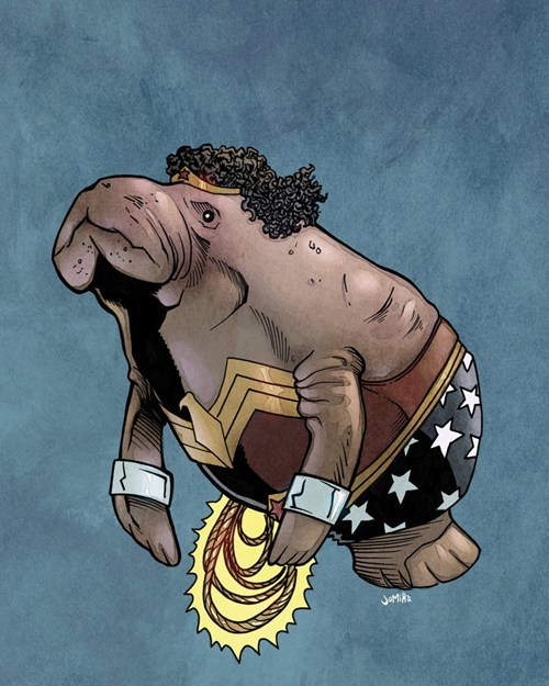 DC,marvel,superheroes,the sea cow
