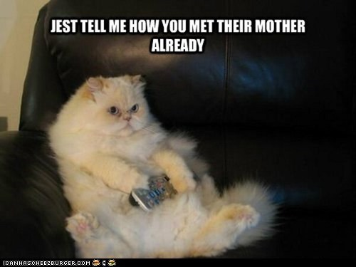 already,captions,Cats,how i met your mother,impatient,lolcats,remote controls,TV