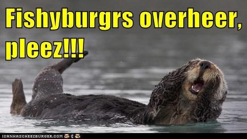 Cheezburger Image 6460769792