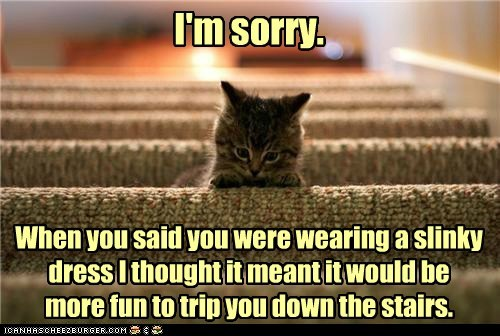 apology,captions,Cats,dress,kitten,sexy,slinky,sorry,stairs