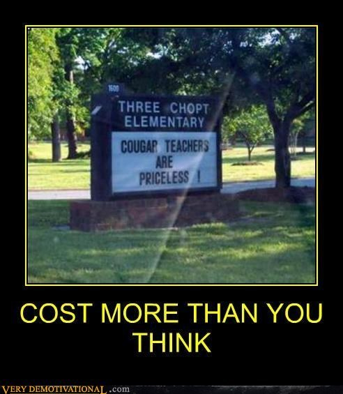 cougar hilarious priceless sign teachers