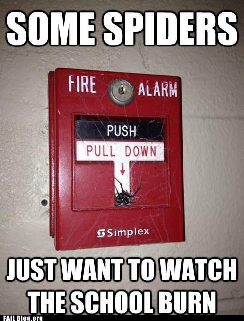 fire alarm spiders - 6461395712
