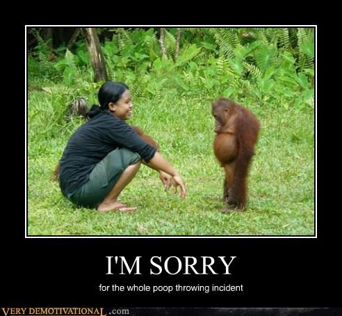 ape hilarious poop Sad sorry - 6461453056