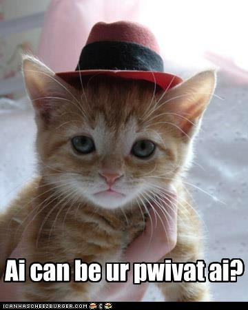 captions,Cats,detective,hat,noir,outfit,pi,pretend,private eye