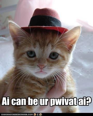 captions Cats detective hat outfit pretend - 6461570304