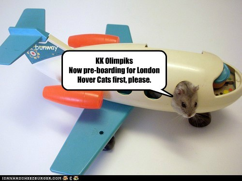 Bunway Airlines Haiku bunway KK Olimpiks Now pre-boarding for London Hover Cats first, please.