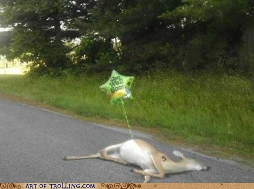 balloon,deer,get well soon,IRL