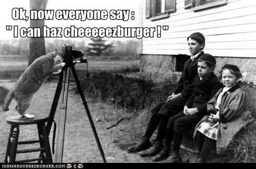 cameras captions Cats cheezburgers food I Can Has Cheezburger lolcats photographers photos portraits ye old
