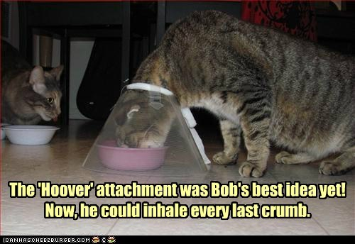 The 'Hoover' attachment was Bob's best idea yet! Now, he could inhale every last crumb.