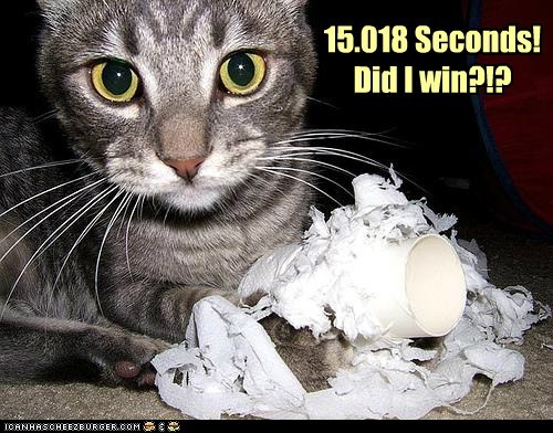 captions Cats destroy London 2012 olympics roll shred speed time toilet paper - 6462518272