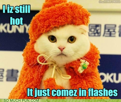 cat,flashes,hot,hot flashes,lolcats