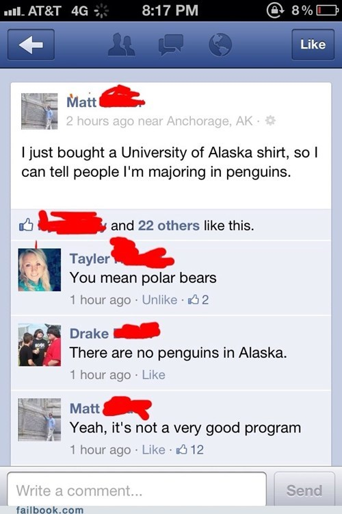alaska,university of alaska,penguins,polar bears