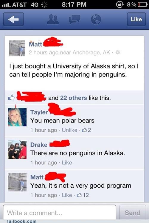 alaska university of alaska penguins polar bears - 6462781696