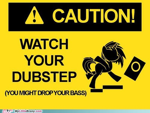 caution dj PON-3 dubstep the internets