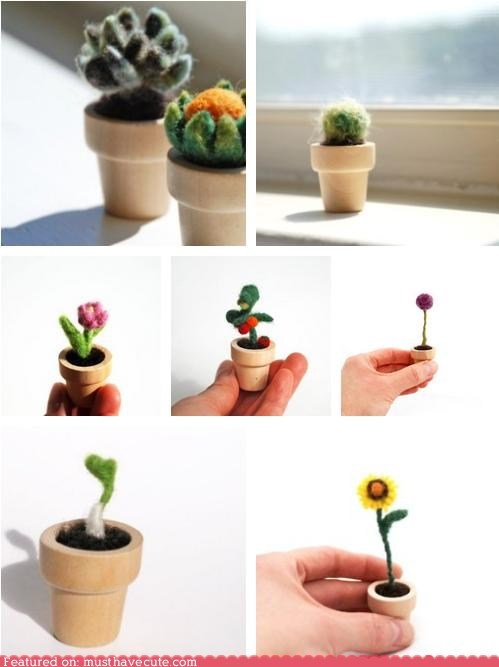felt,flowers,handmade,miniature,plants