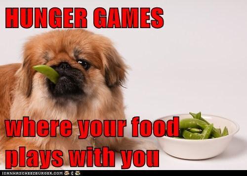 Cheezburger Image 6463845120