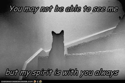 You may not be able to see me but my spirit is with you always