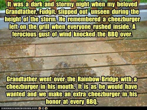 Cheezburger Image 6464326400