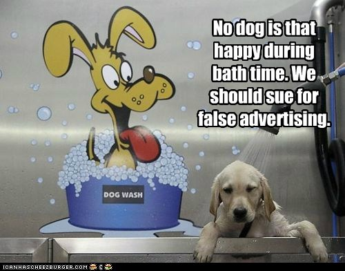 No dog is that happy during bath time. We should sue for false advertising.
