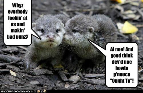 bad jokes confused joke otters puns stupid whisper - 6465153280