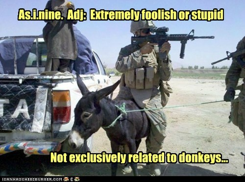 As.i.nine. Adj: Extremely foolish or stupid Not exclusively related to donkeys...
