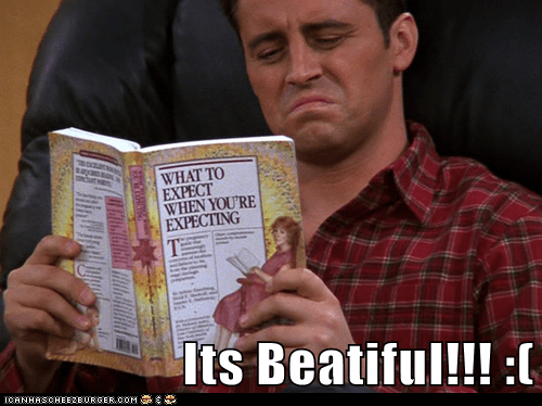 Cheezburger Image 6465283072