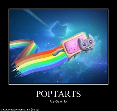 POPTARTS Are Gayy. lol