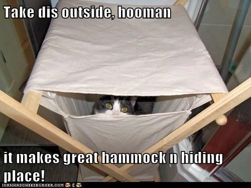 Take dis outside, hooman it makes great hammock n hiding place!