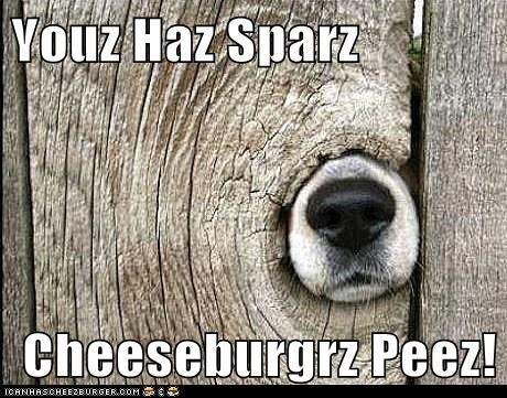 Cheezburger Image 6466313216