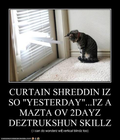 """CURTAIN SHREDDIN IZ SO """"YESTERDAY""""...I'Z A MAZTA OV 2DAYZ DEZTRUKSHUN SKILLZ ( i can do wonderz wit vertical blindz too)"""