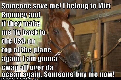Someone save me! I belong to Mitt Romney and if they make me fly back to the USA on