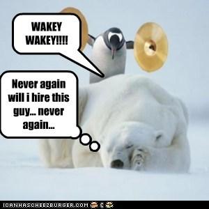 alarm annoyed cymbals never again penguin polar bear tired waking up - 6468536320